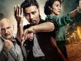 master-z-ip-man-legacy-movie-review