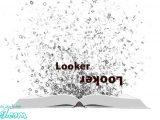واژه looker به معنای خوش قیافه میباشد اما زمانی از looker استفاده میکنیم که بخواهیم به اصطلاح چاپلوسی کنیم.