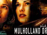 فیلم جاده مالهالند فیلمی معمایی و دارای عناصر سورئال محصول سال ۲۰۰۱ کشور ایالات متحده است شاهکاری از نویسنده و کارگردان خاص و گزیده کار سینما دیوید لینچ که فیلم های بزرگراه گمشده و مخمل آبی از دیگر آثار مطرح این کارگردان می باشد.