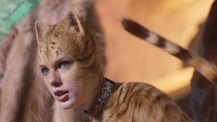 فیلم cats