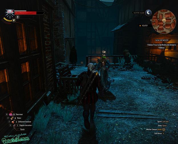 راهنمای The Witcher 3 / ماموریت فرعی Now or Never