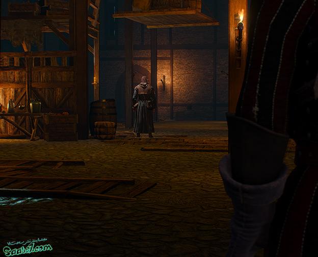 راهنمای The Witcher 3 / ماموریت فرعی Carnal Sins