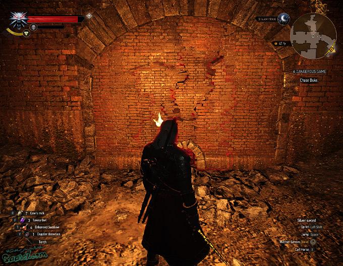 راهنمای The Witcher 3 / ماموریتهای فرعی A Dangerous Game و A Tome Entombed