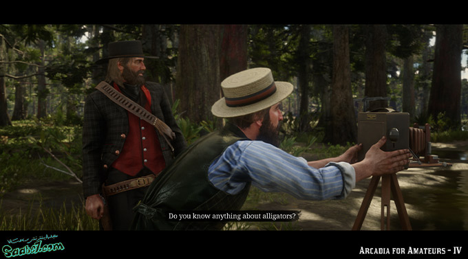 راهنمای بازی Red Dead Redemption 2 / مرحله فرعی: Arcadia For Amateurs